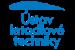 Institute of Aerospace Engineering logo